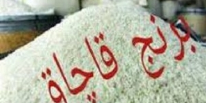 کشف یک محموله برنج خارجی قاچاق در شهرستان لنجان